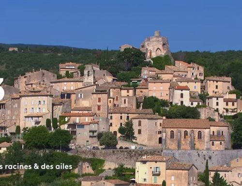 Des Racines et Des Ailes – Passion patrimoine : Mon village en Provence